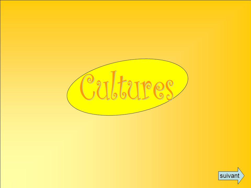 Cultures suivant