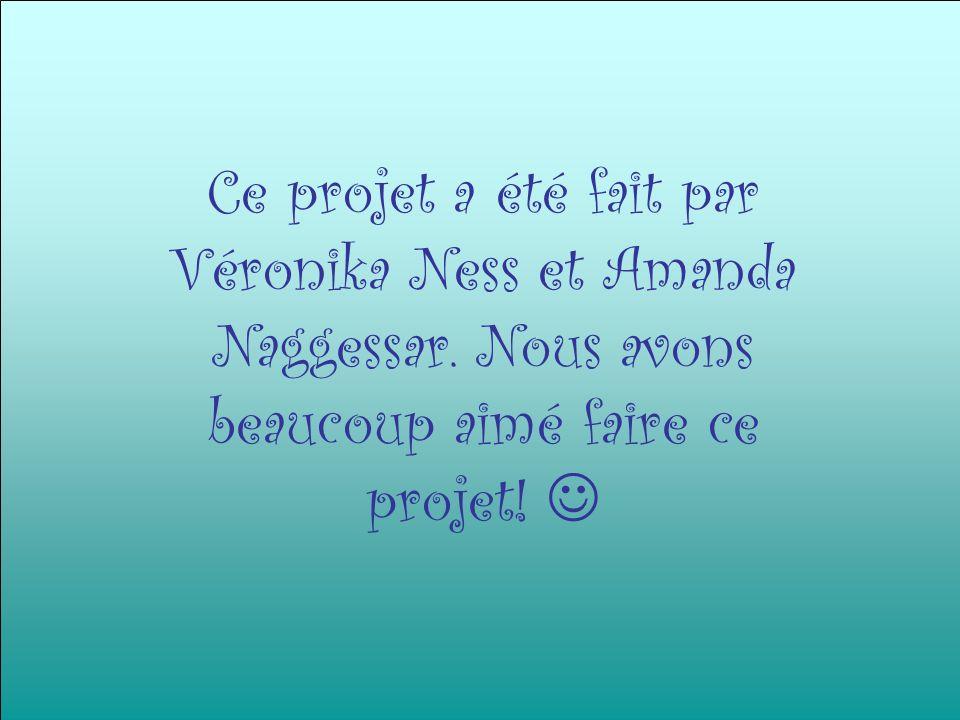 Ce projet a été fait par Véronika Ness et Amanda Naggessar
