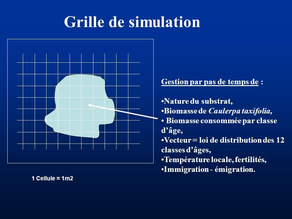 Grille de simulation Gestion par pas de temps de : Nature du substrat,