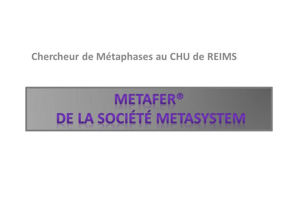 metafer® de la société mEtasystem