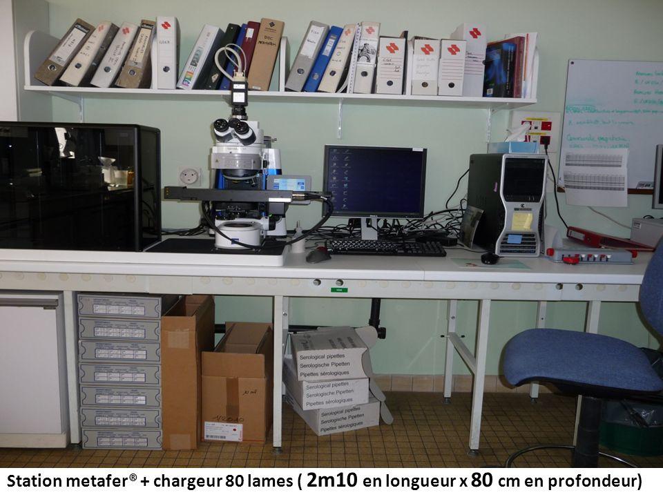 Station metafer® + chargeur 80 lames ( 2m10 en longueur x 80 cm en profondeur)