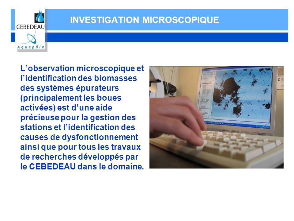 INVESTIGATION MICROSCOPIQUE