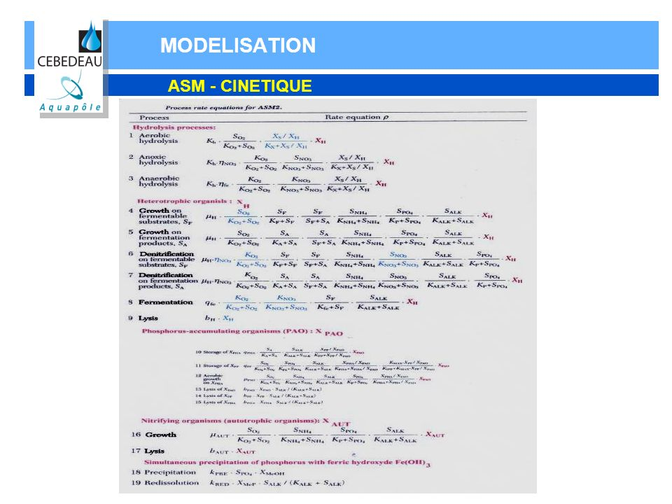 MODELISATION ASM - CINETIQUE
