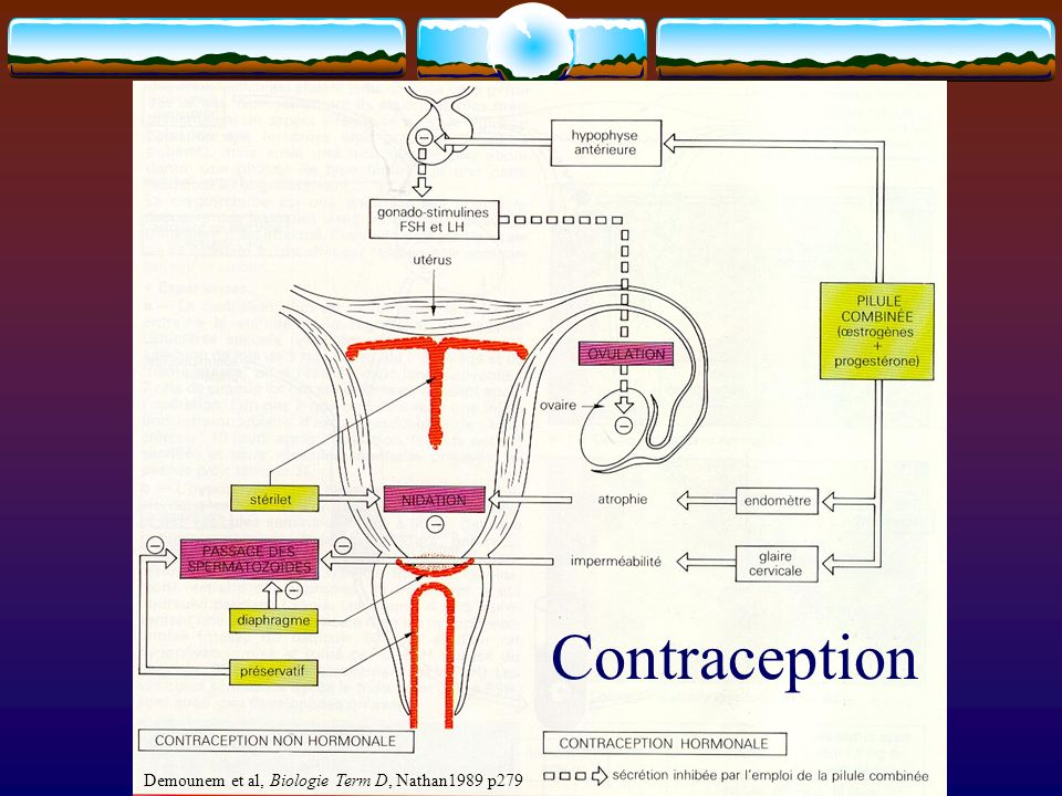 Contraception Demounem et al, Biologie Term D, Nathan1989 p279