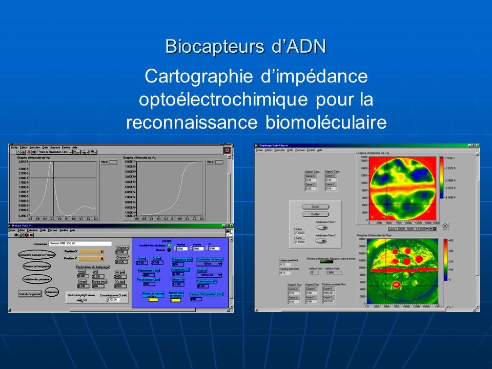 Biocapteurs d'ADN Cartographie d'impédance optoélectrochimique pour la reconnaissance biomoléculaire.