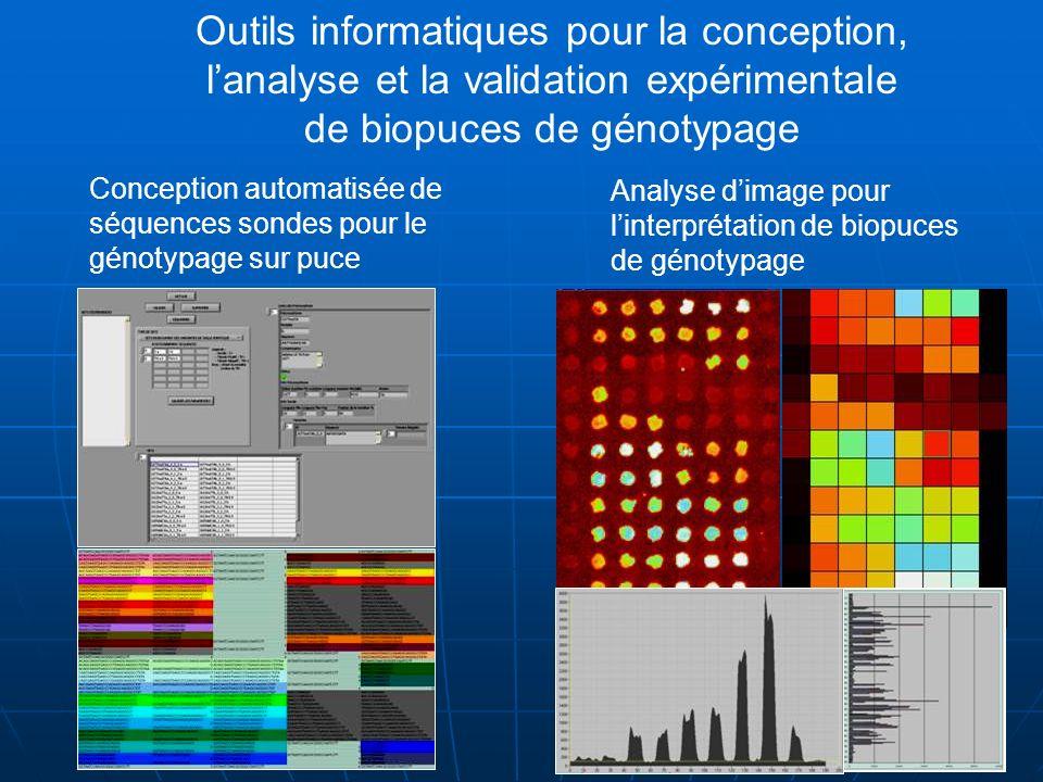 Outils informatiques pour la conception, l'analyse et la validation expérimentale de biopuces de génotypage