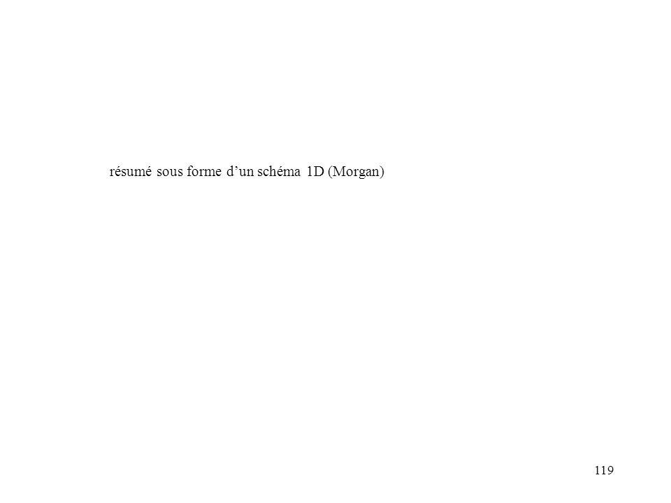résumé sous forme d'un schéma 1D (Morgan)