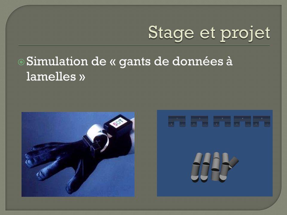 Stage et projet Simulation de « gants de données à lamelles »
