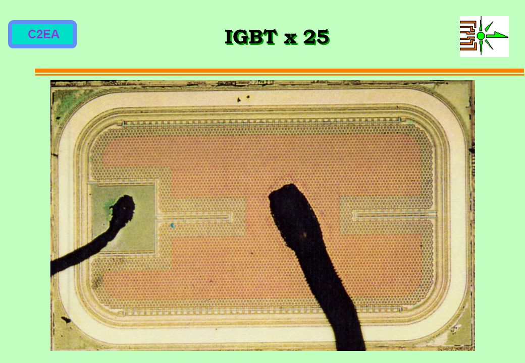 IGBT x 25
