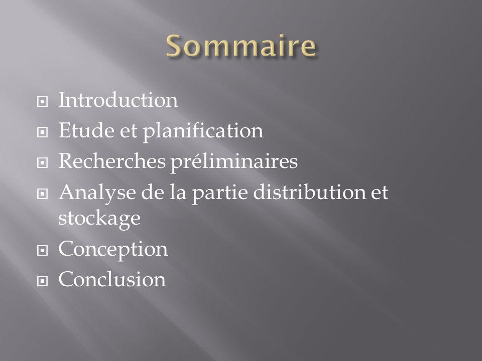 Sommaire Introduction Etude et planification Recherches préliminaires