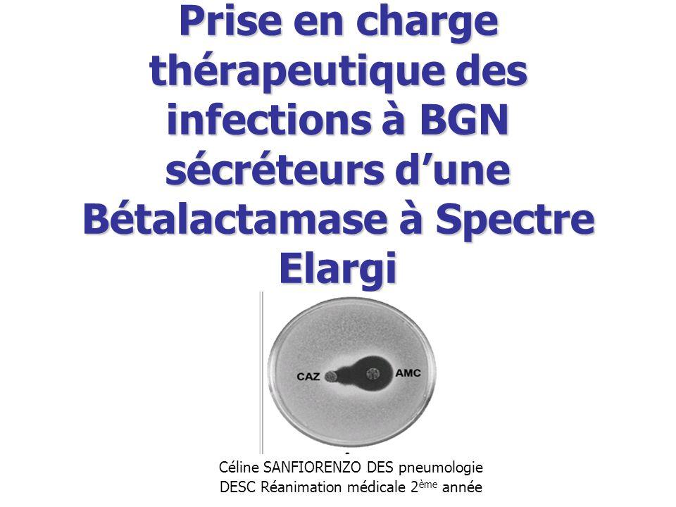 Prise en charge thérapeutique des infections à BGN sécréteurs d'une Bétalactamase à Spectre Elargi