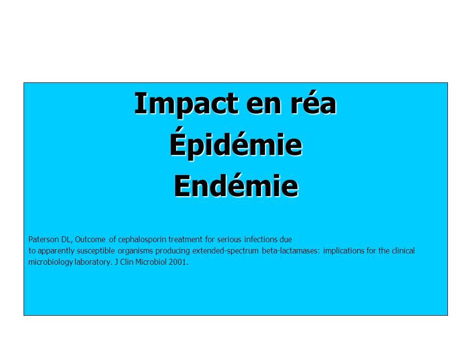 Impact en réa Épidémie Endémie