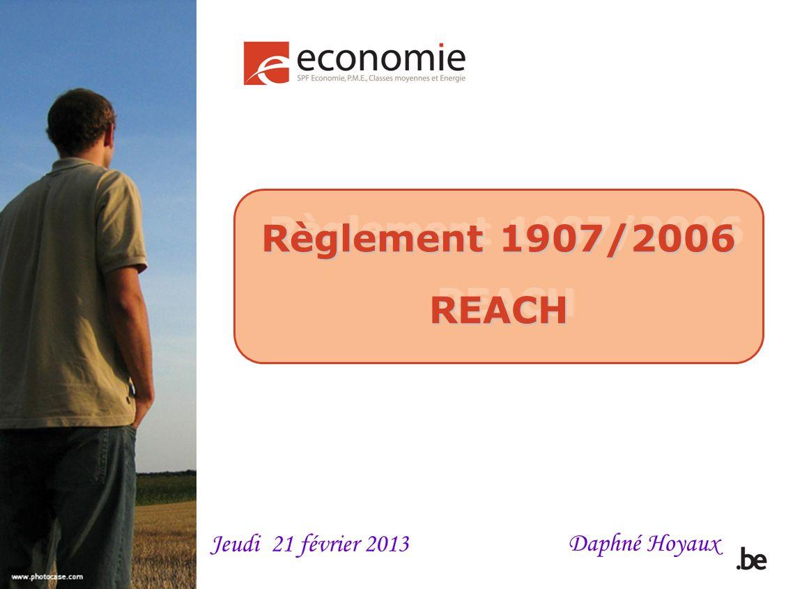 Règlement 1907/2006 REACH Daphné Hoyaux Jeudi 21 février 2013