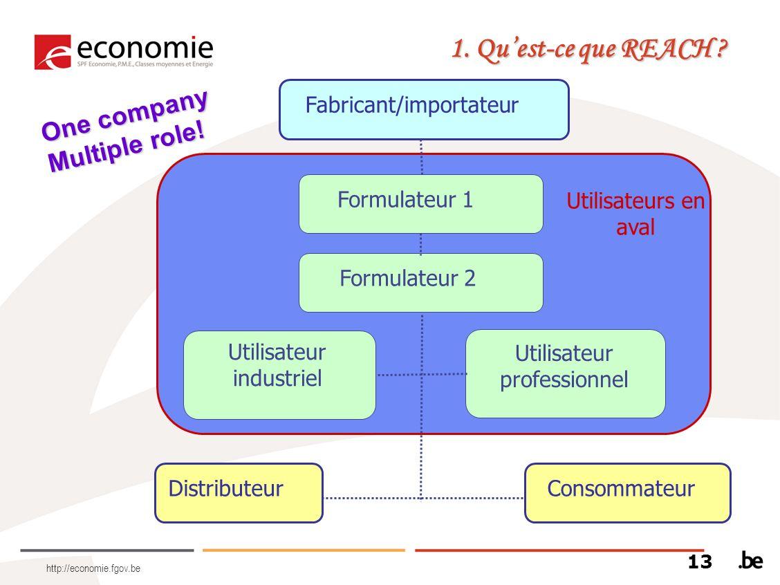 1. Qu'est-ce que REACH One company Multiple role!
