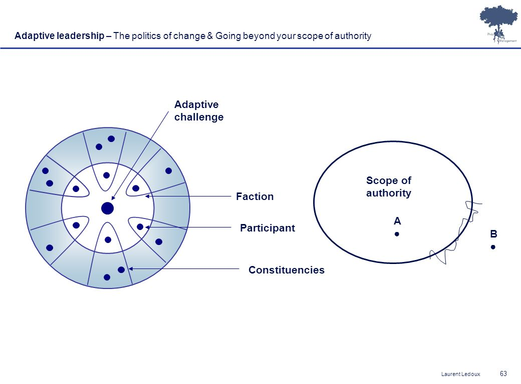 Adaptive challenge Scope of authority Faction A● Participant B●