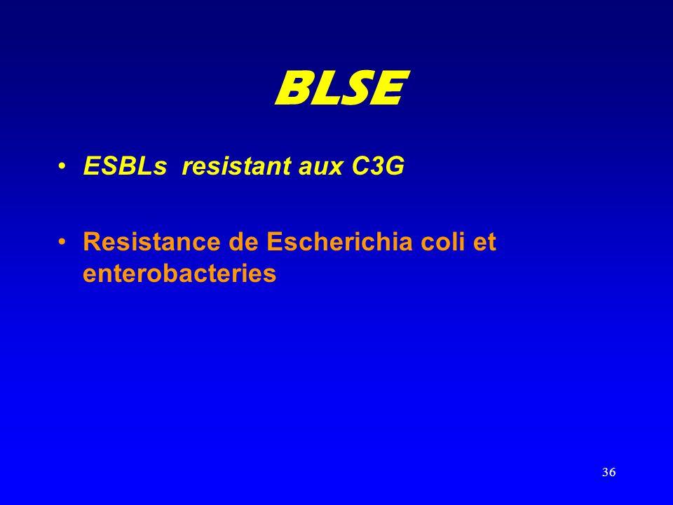 BLSE ESBLs resistant aux C3G