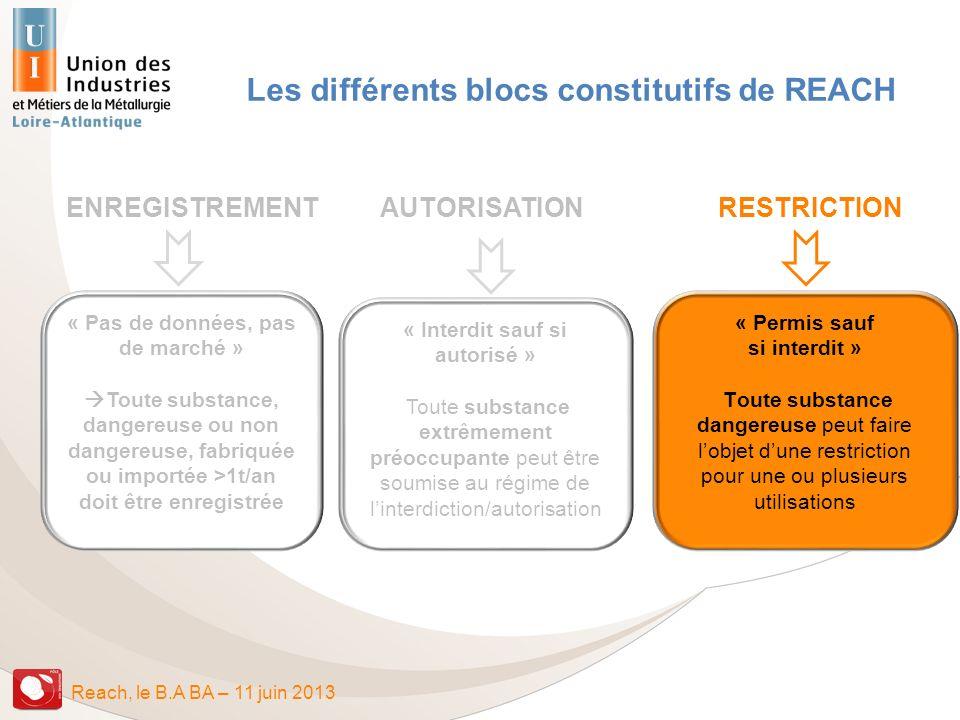Les différents blocs constitutifs de REACH