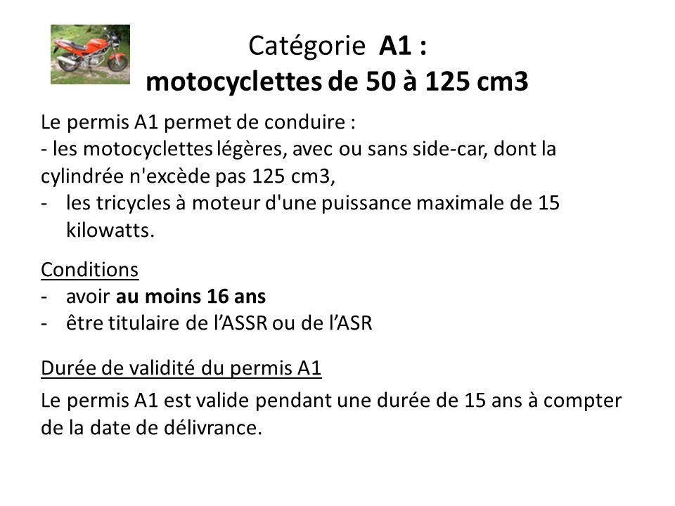 Catégorie A1 : motocyclettes de 50 à 125 cm3