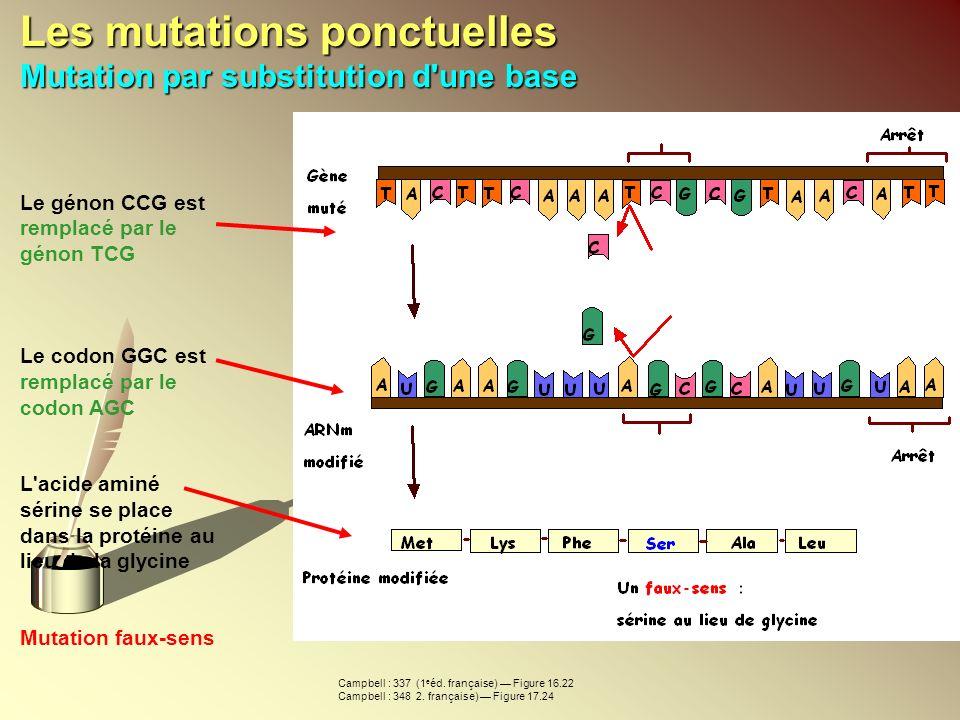 Les mutations ponctuelles Mutation par substitution d une base