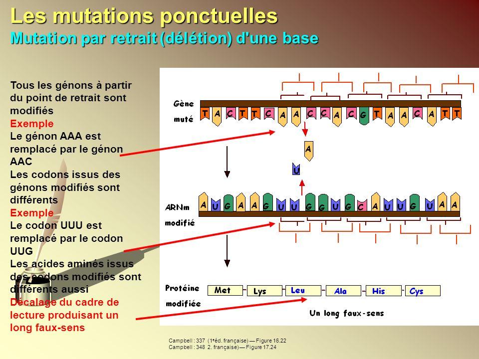 Les mutations ponctuelles Mutation par retrait (délétion) d une base