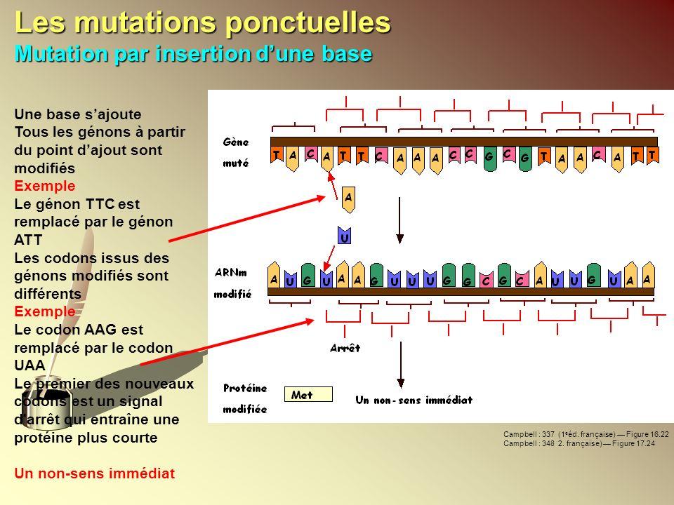 Les mutations ponctuelles Mutation par insertion d'une base