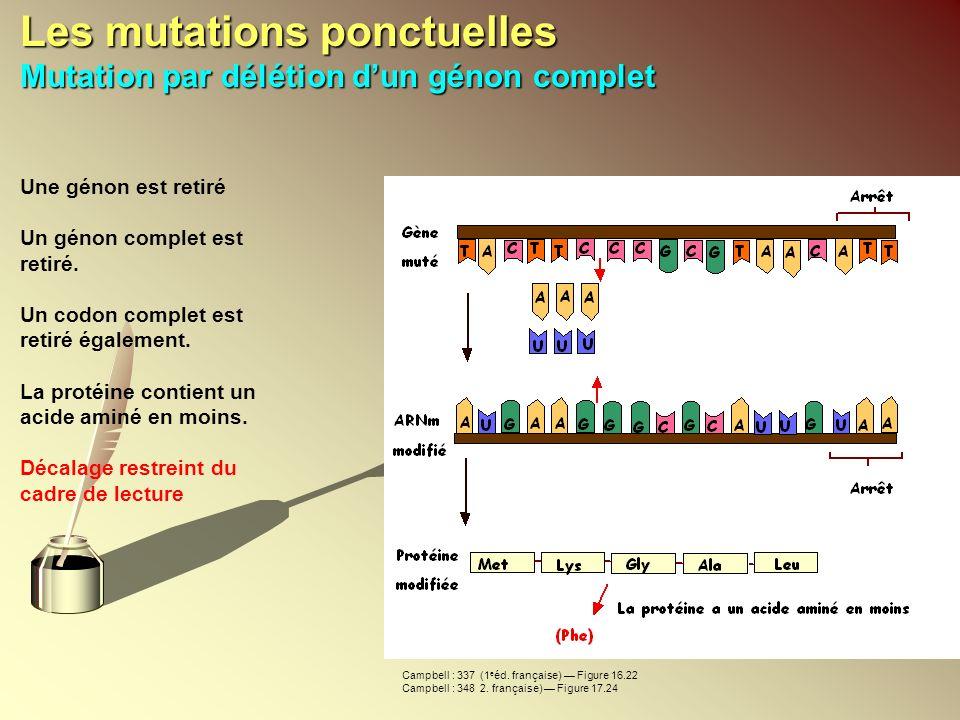 Les mutations ponctuelles Mutation par délétion d'un génon complet
