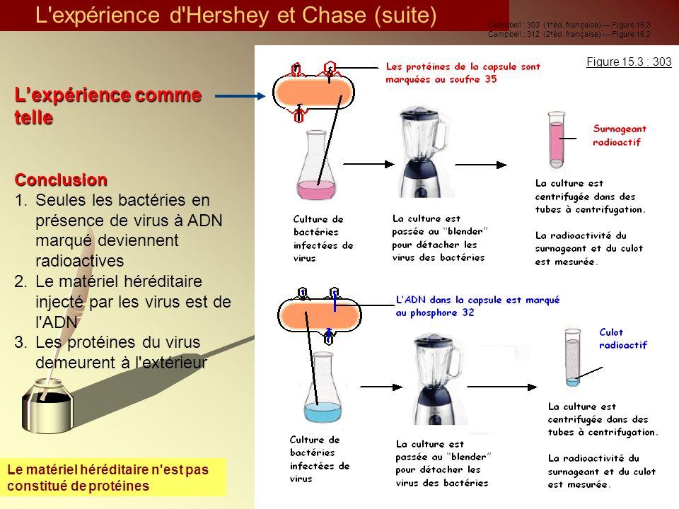 L expérience d Hershey et Chase (suite)