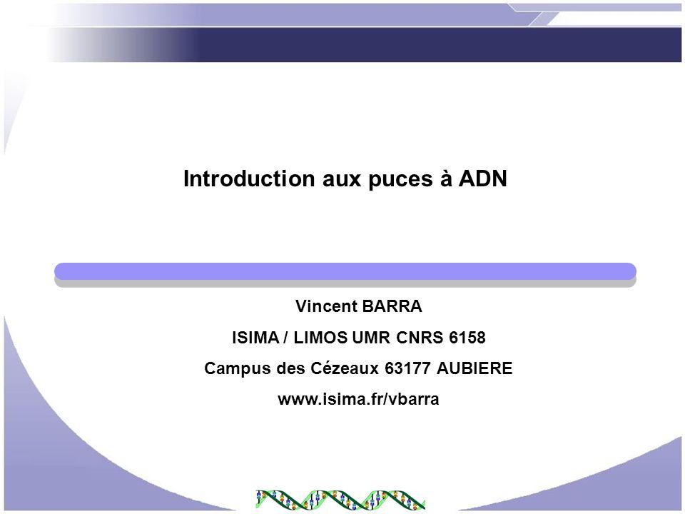 Introduction aux puces à ADN Campus des Cézeaux 63177 AUBIERE