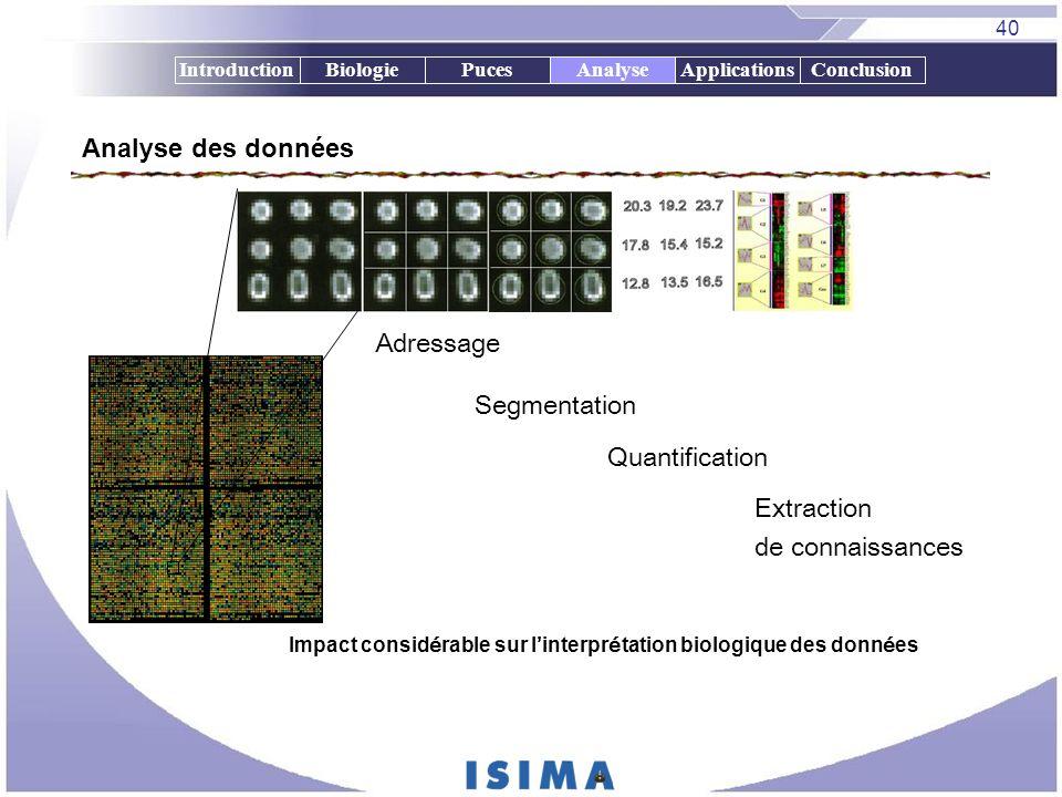 Analyse des données Adressage Segmentation Quantification Extraction