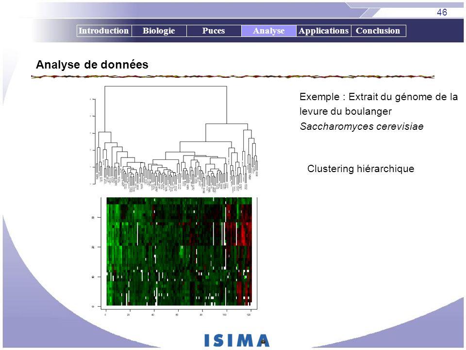 Analyse de données Exemple : Extrait du génome de la