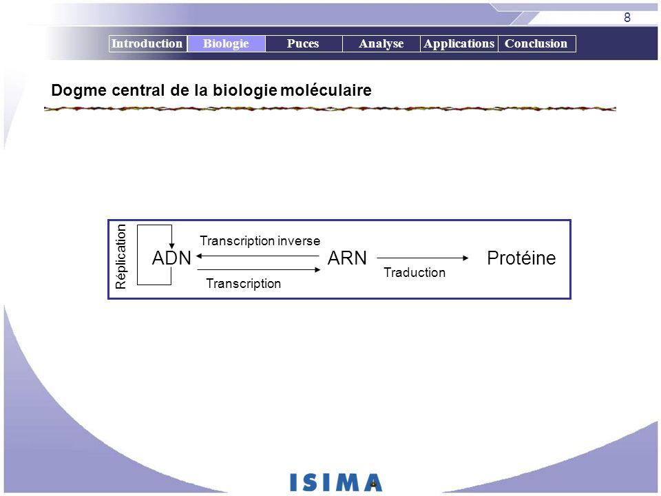 Dogme central de la biologie moléculaire