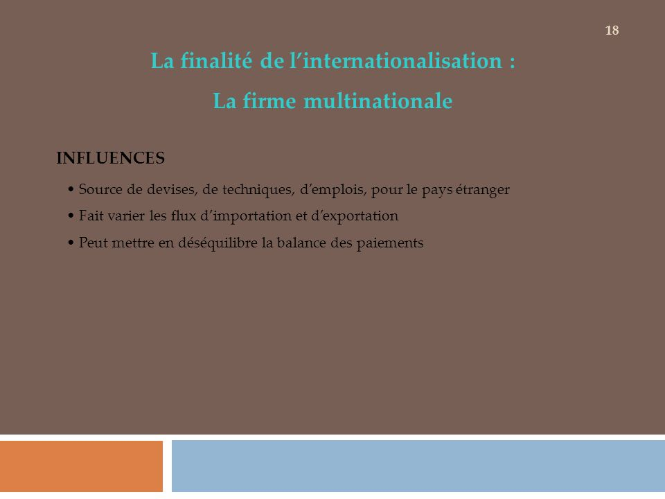 La finalité de l'internationalisation : La firme multinationale