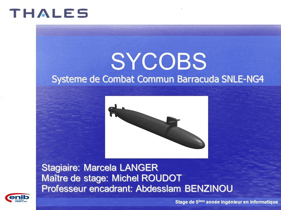 Systeme de Combat Commun Barracuda SNLE-NG4