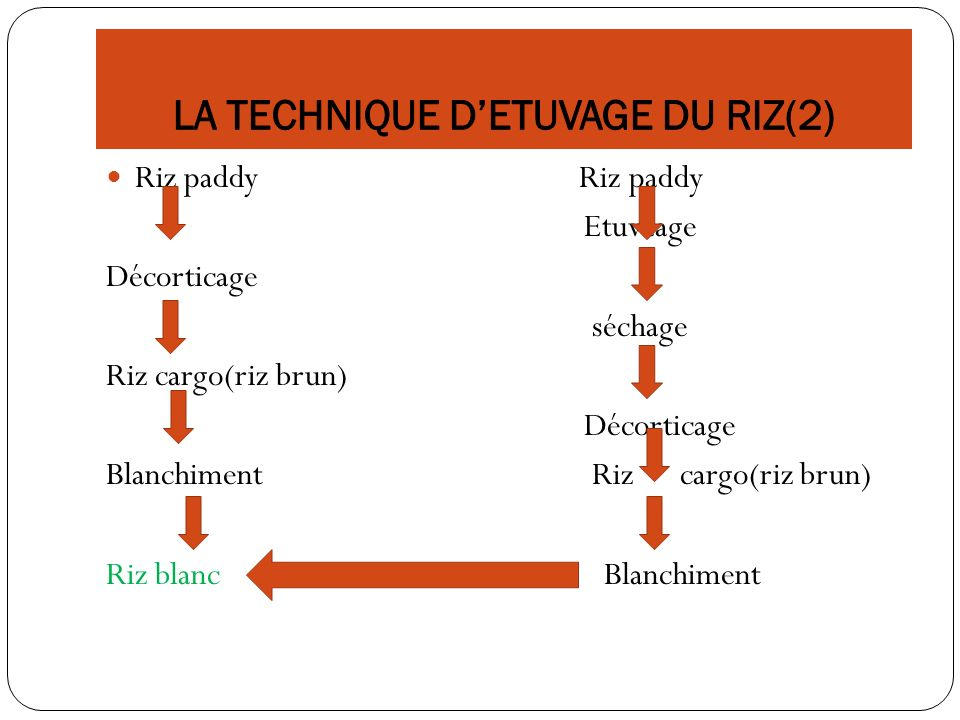 LA TECHNIQUE D'ETUVAGE DU RIZ(2)