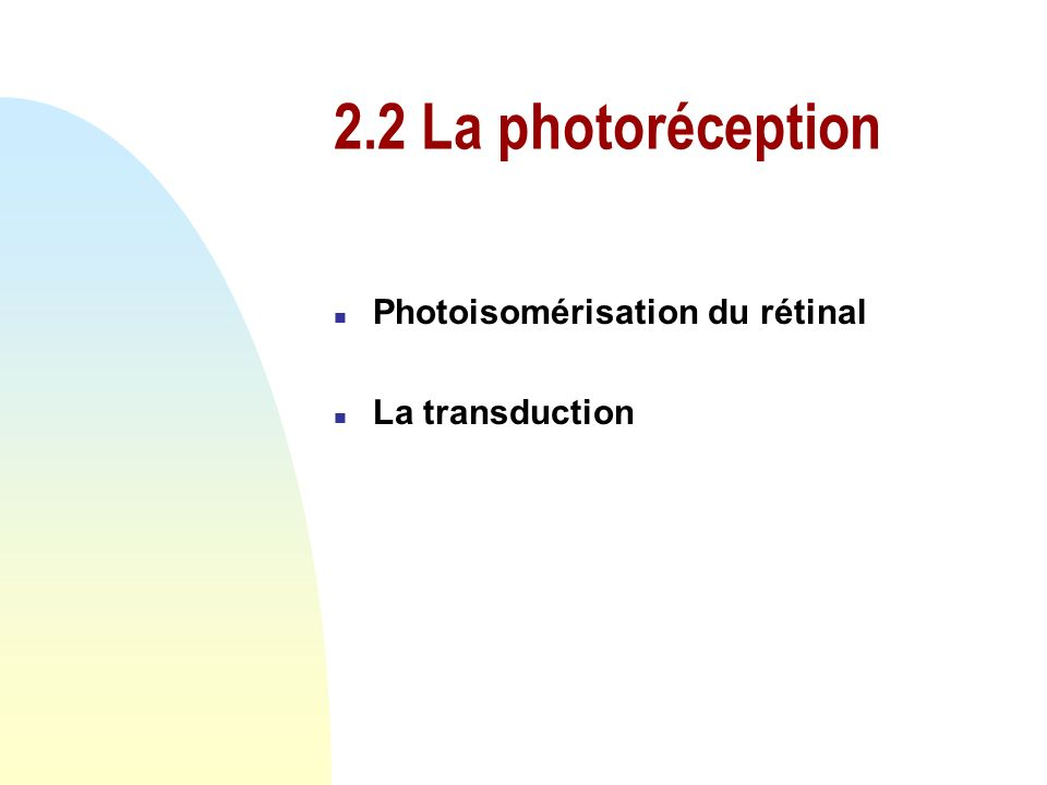 2.2 La photoréception Photoisomérisation du rétinal La transduction