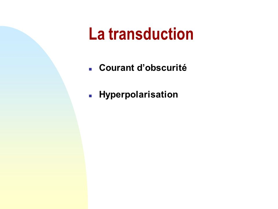 La transduction Courant d'obscurité Hyperpolarisation