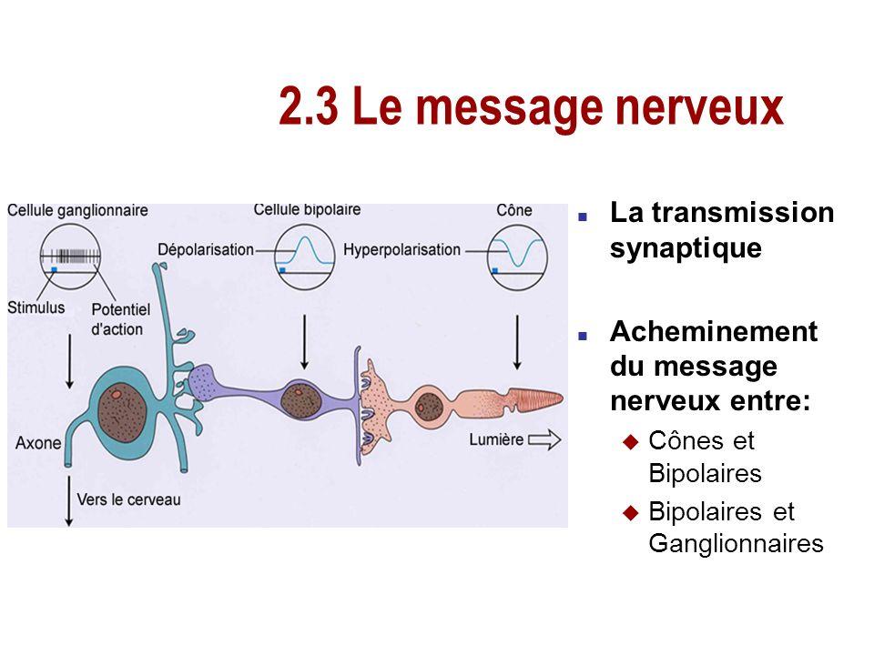 2.3 Le message nerveux La transmission synaptique