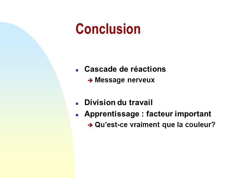 Conclusion Cascade de réactions Division du travail