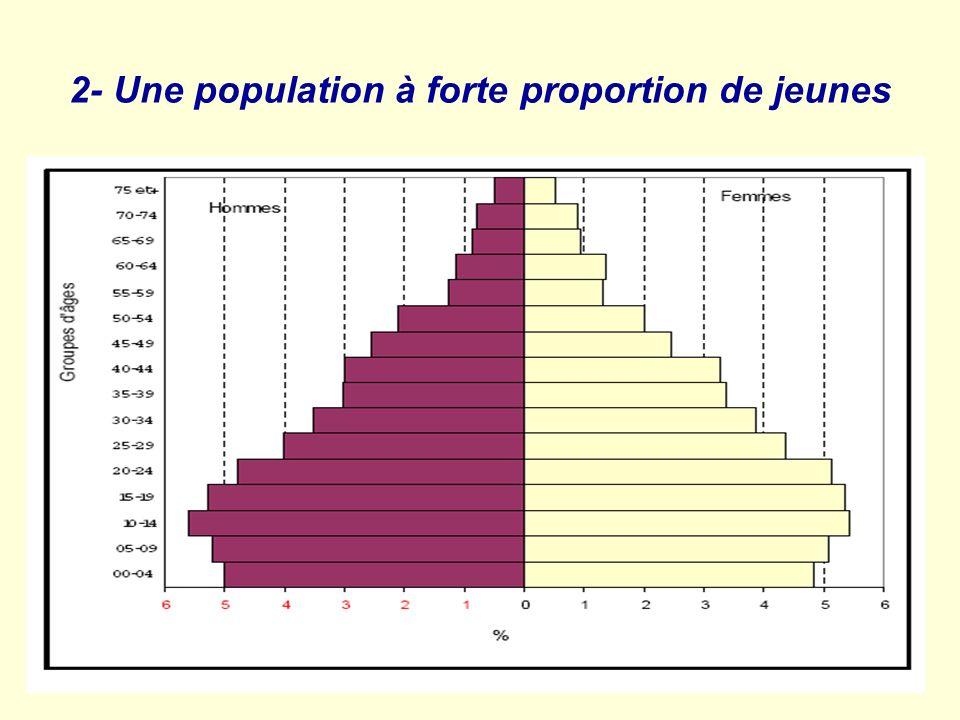 2- Une population à forte proportion de jeunes