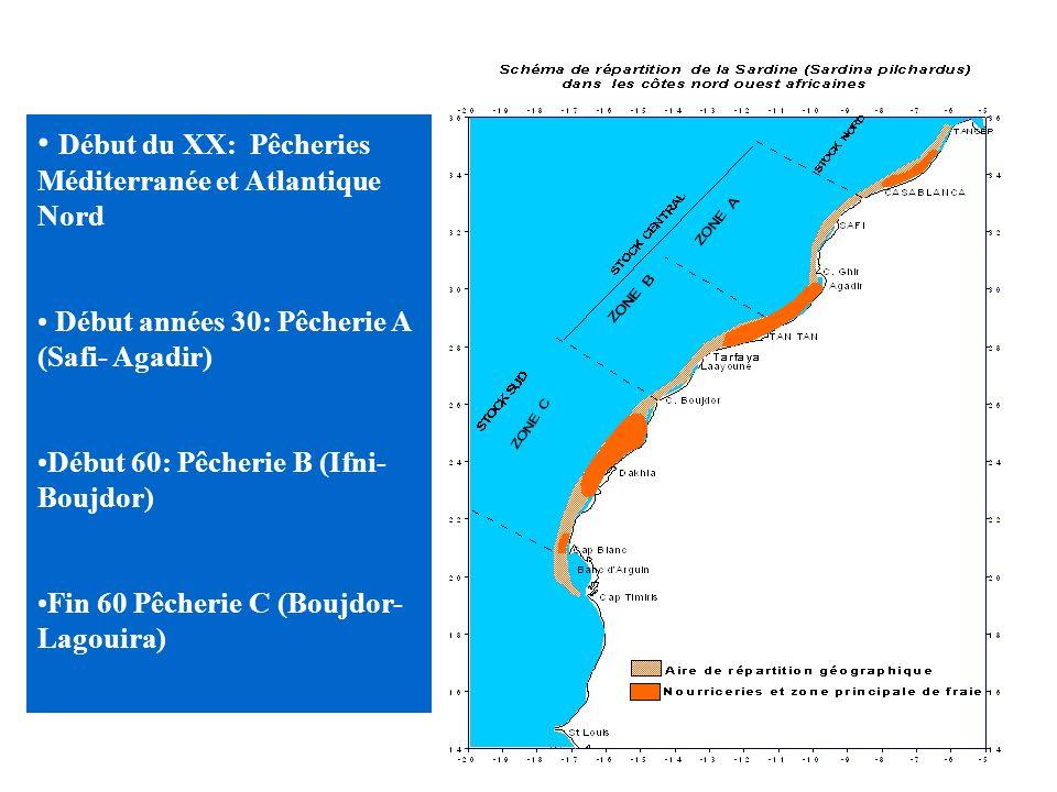 Début du XX: Pêcheries Méditerranée et Atlantique Nord