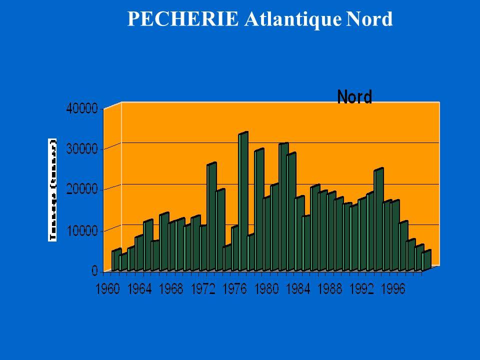 PECHERIE Atlantique Nord