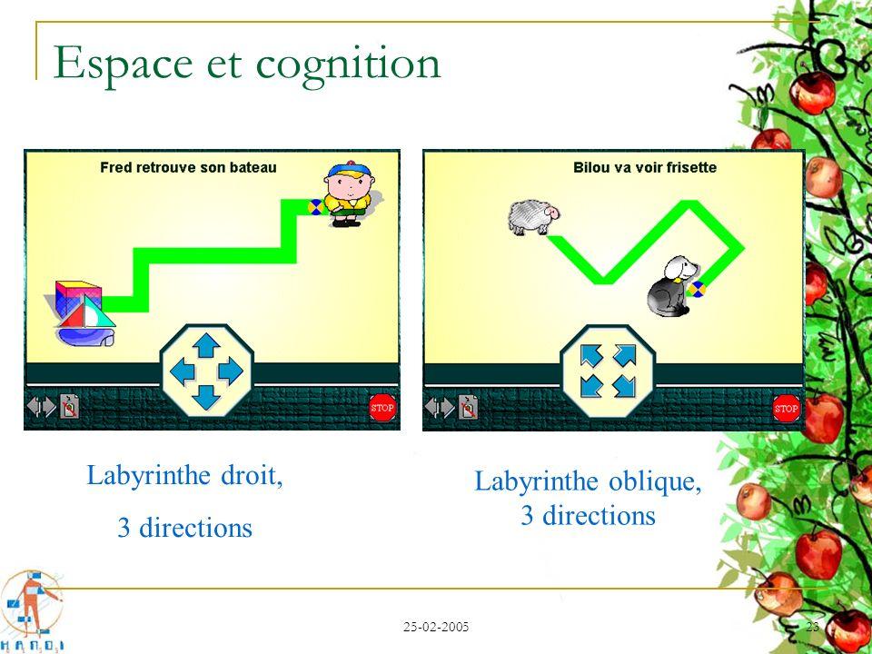 Espace et cognition Labyrinthe droit, Labyrinthe oblique, 3 directions