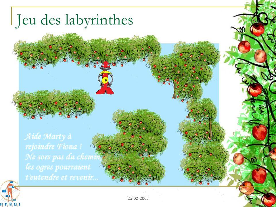 Jeu des labyrinthes 25-02-2005