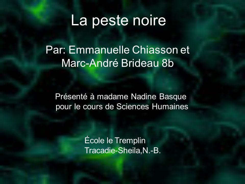 Par: Emmanuelle Chiasson et Marc-André Brideau 8b
