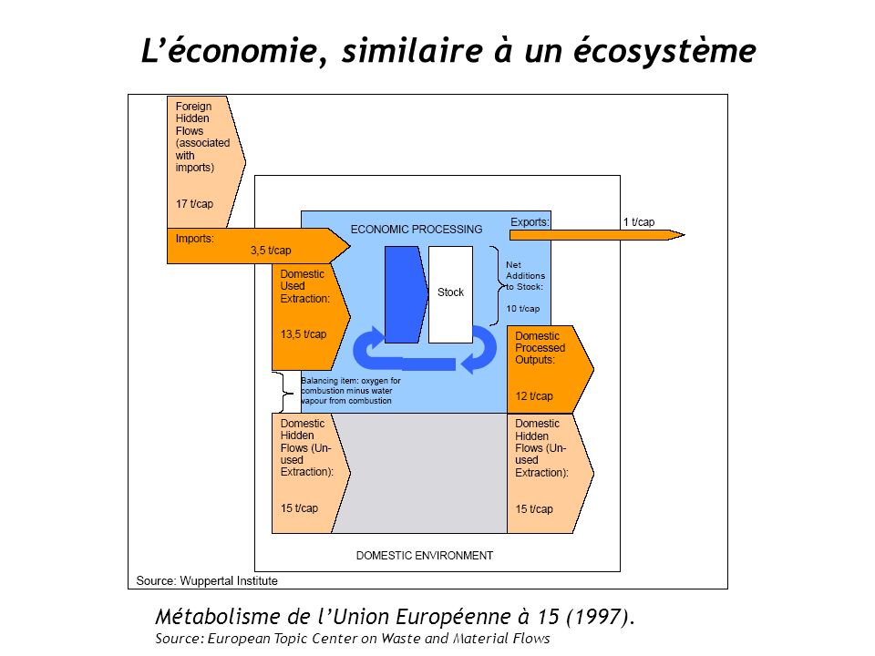 L'économie, similaire à un écosystème