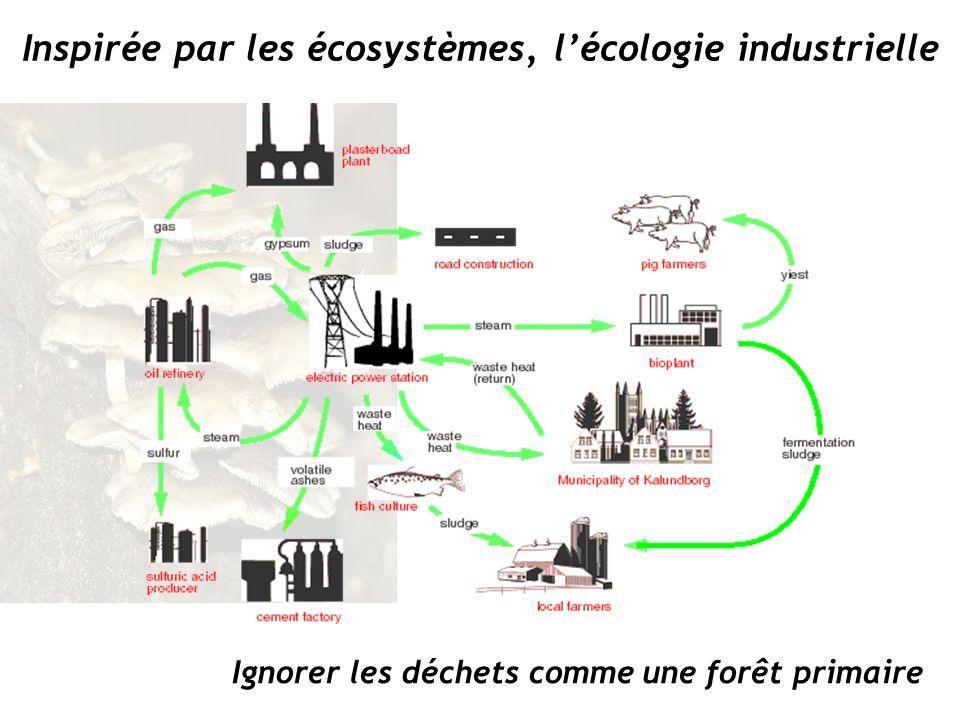 Inspirée par les écosystèmes, l'écologie industrielle
