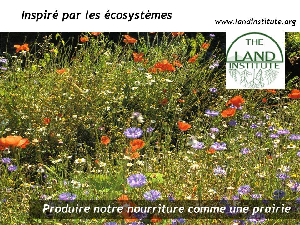 Inspiré par les écosystèmes