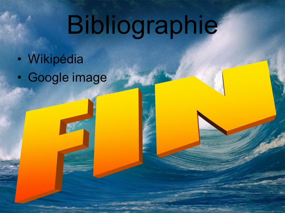 Bibliographie Wikipédia Google image FIN