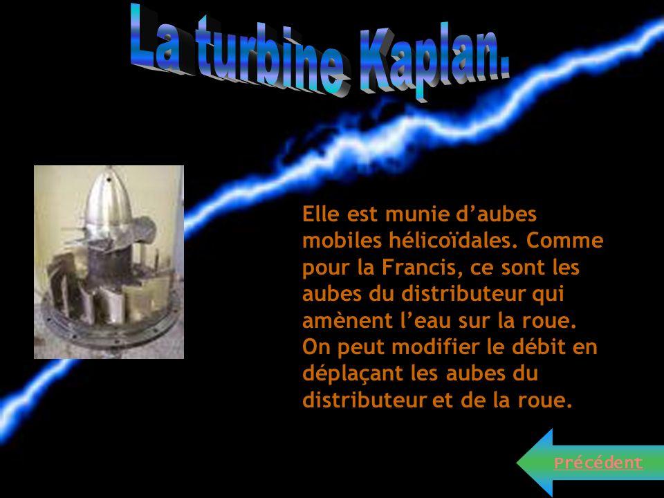 La turbine Kaplan.