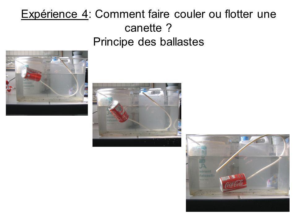 Expérience 4: Comment faire couler ou flotter une canette